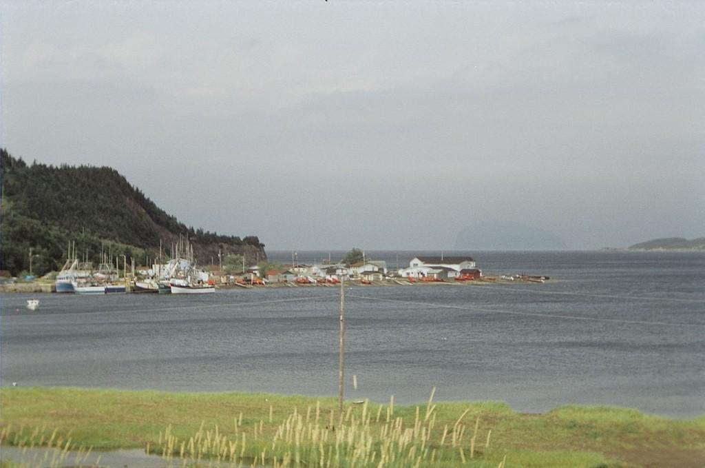 Newfoundland ports